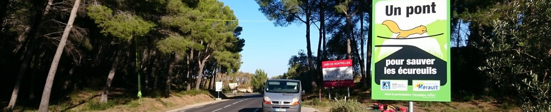 Les écuroducs de l'Hérault
