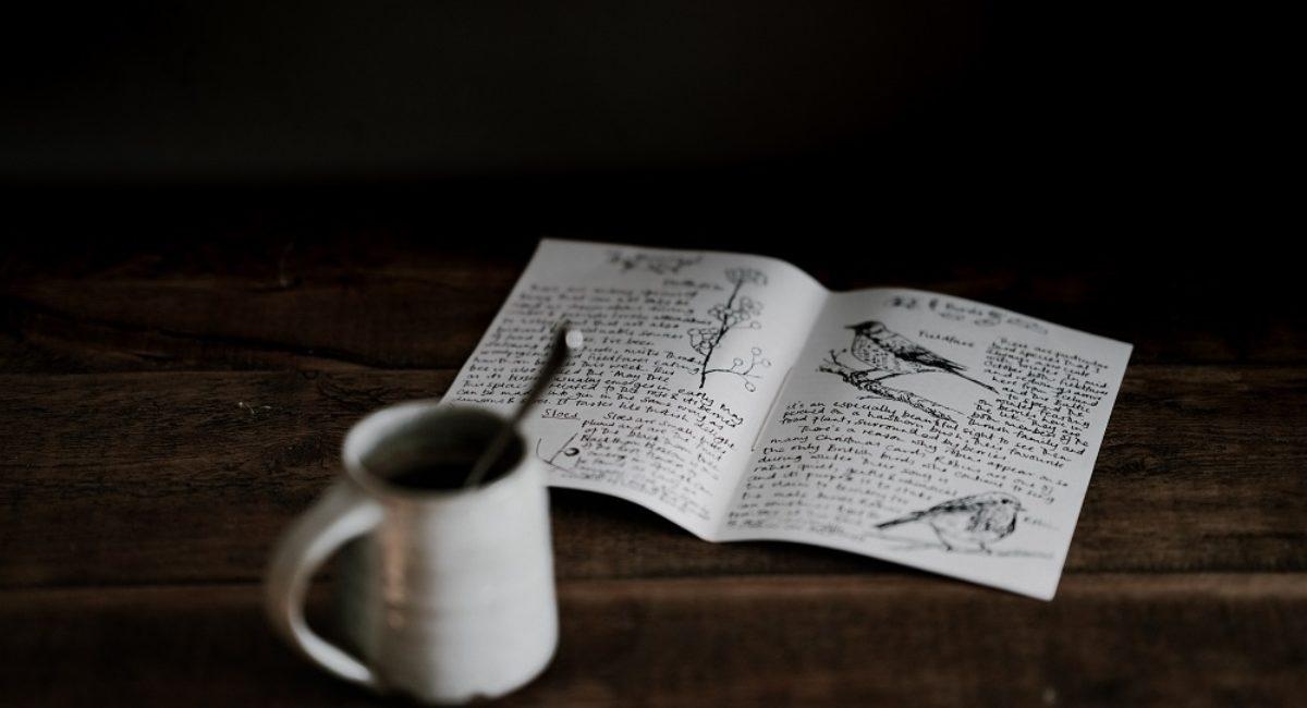 livre_oiseaux